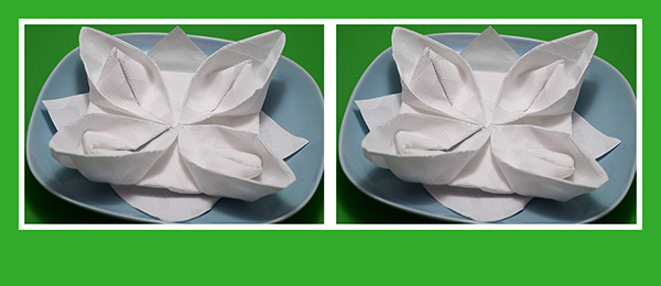Pappierservietten falten Lotusblüte Seerose